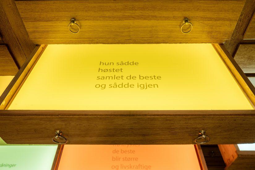 <em>Frøfortellinger/ Stories of seeds</em>, Hanne Tyrmi. Fotograf: Marius Hauge