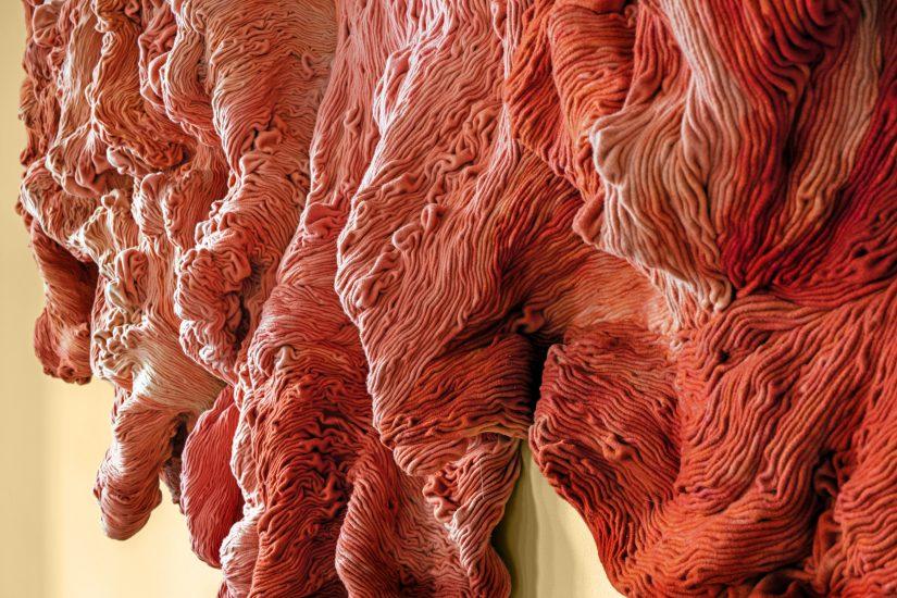 <em>Shades of Rubia Tinctorum</em>, Hanne Friis. Fotograf: Marius Hauge