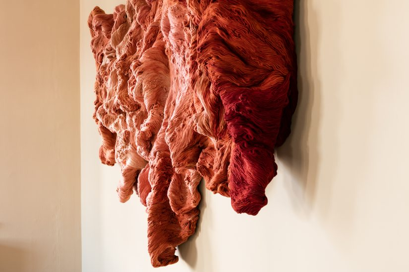 <em>Shades of Rubia Tinctorum</em>, Hanne Friis. Photographer: Marius Hauge