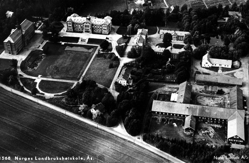 <em>Universitetsområdet, daværende Norges Landbrukshøgskole, ca. 1938.</em>, NMBU Fotoarkiv. Fotograf: Norsk Luftfoto A/S