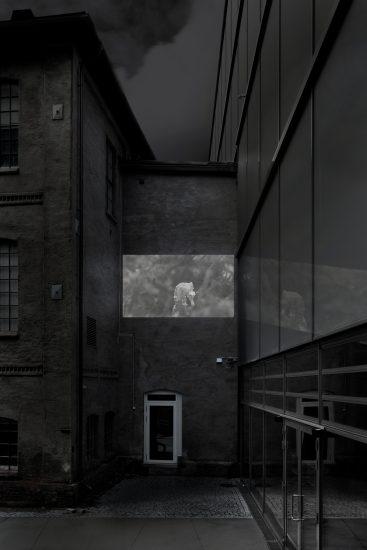 """<em>Scenes from """"Holograms of Ecolonia"""" (stillbilde/rendering)</em>, Carolina Jonsson. Fotograf: Werner Zellien"""