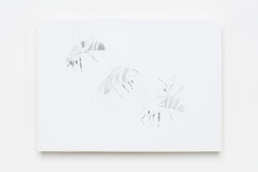 <em>Anne Knutsdatter Wille</em>, blyant på papir, 2009. Photographer: Vegard Kleven