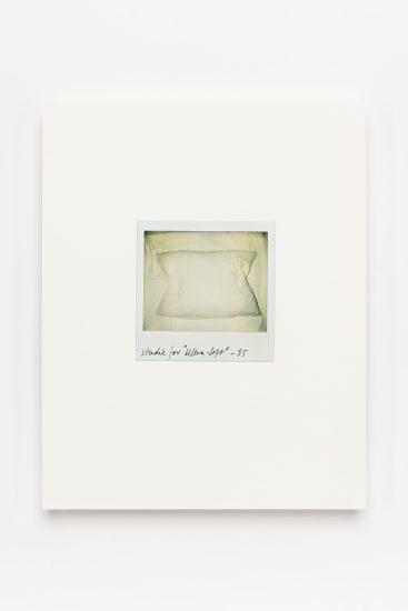 <em>Andrea Lange</em>, polaroid, 1995. Photographer: Vegard Kleven
