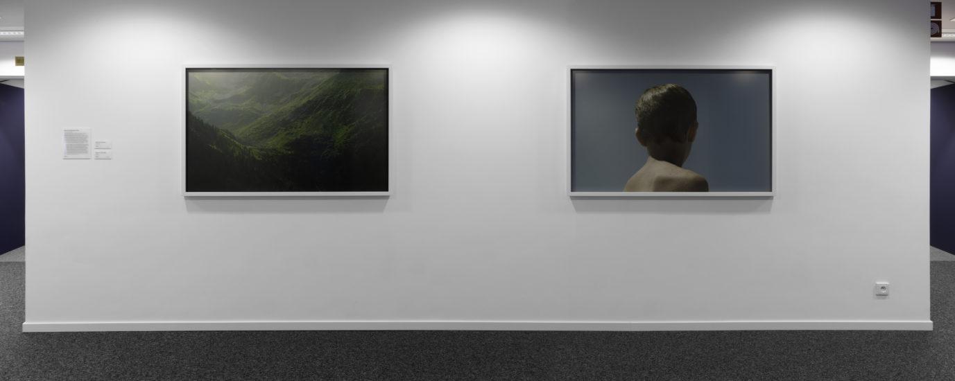 <em>the veil, view</em>, Morten Andenæs. Fotograf: Werner Zellien