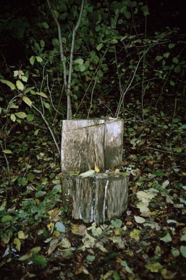 <em>Under tiden (5)</em>, Line Bøhmer Løkken. Photographer: Line Bøhmer Løkken