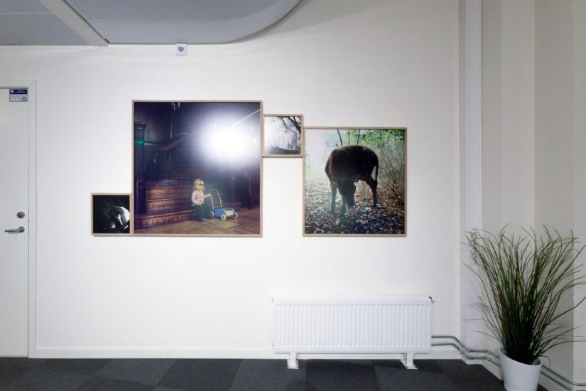 <em>The ideal state (Singing and milking)</em>, Una Hunderi. Photographer: Werner Zellien