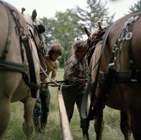 <em>The ideal state (Harnessing the horses before work)</em>, Una Hunderi. Photographer: Una Hunderi