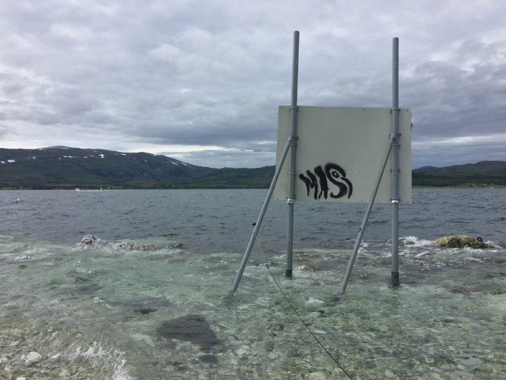 <em>Lydopptak, Tromsø Sonarium - 69°39'07'N 018°57'12'Ø</em>, Alexander Rishaug. Photographer: Alexander Rishaug