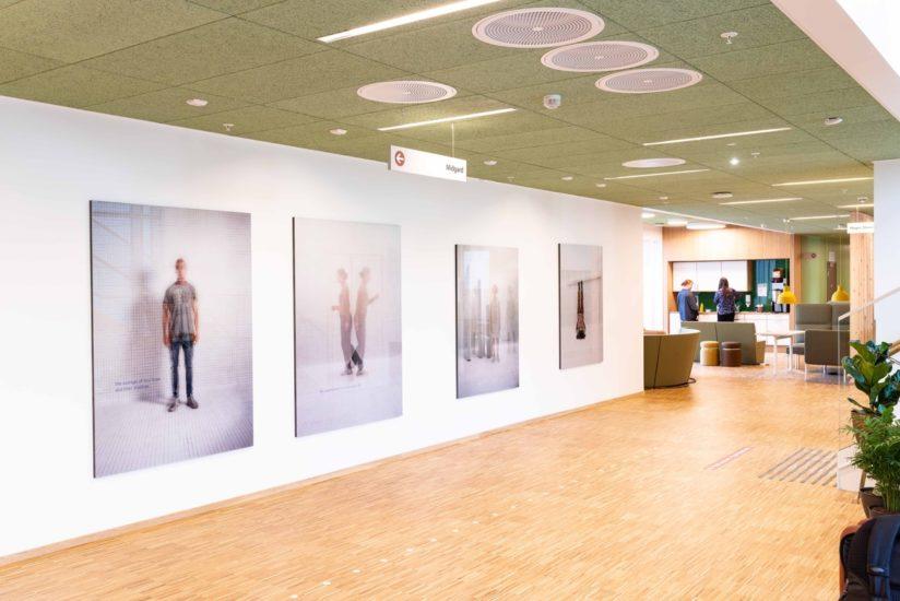 <em>His full potential</em>, Else Marie Hagen. Photographer: Thor Brødreskift